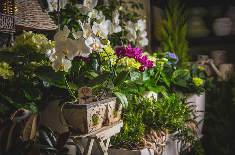 fotografia produktowa - kwiaciaria Maricler